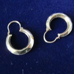 Ear Rings 9ct loops